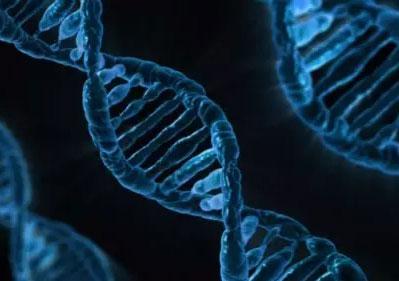 12%的中国人携带听障基因,遗传性听障能否最大程度避免?